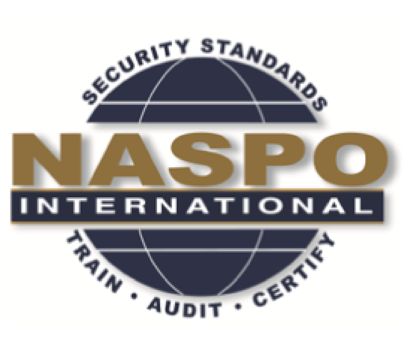 NASPO LEVEL II, ISO 14298:2013